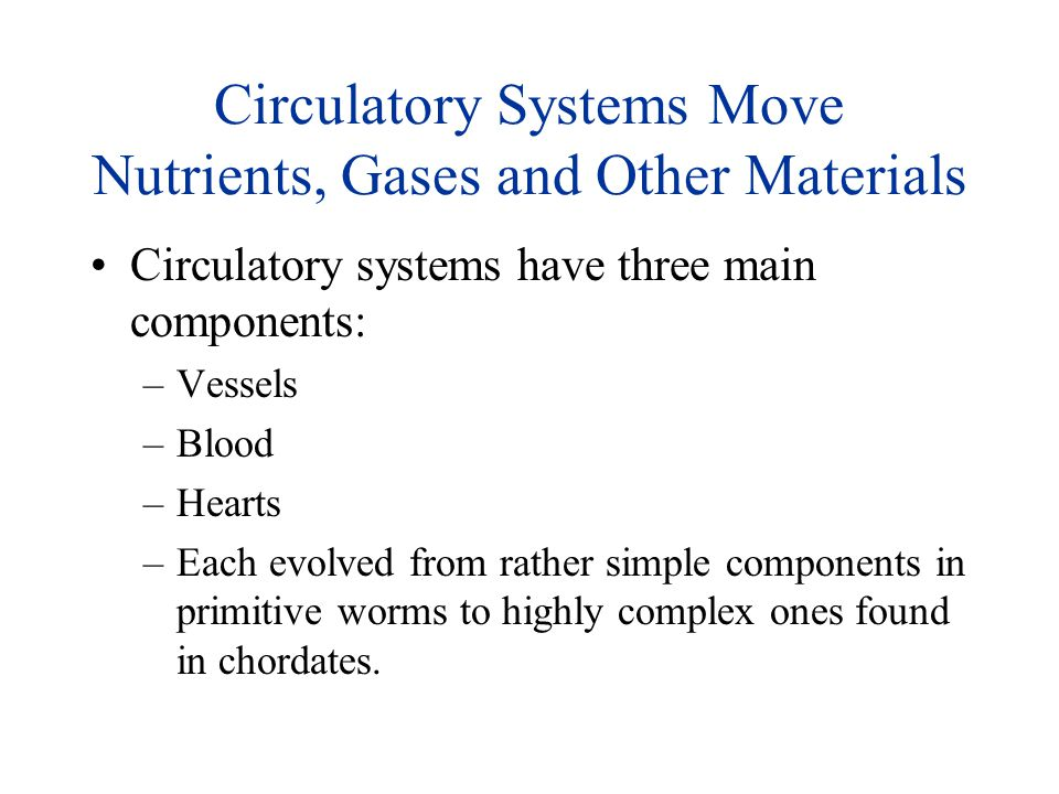 Circulatory Systems Move Nutrients, Gases and Other Materials