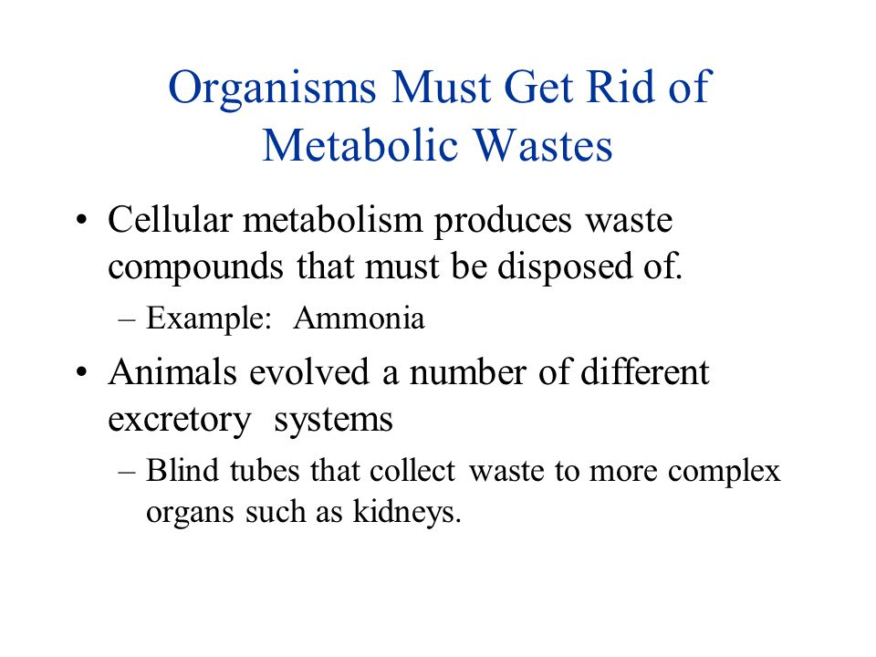 Organisms Must Get Rid of Metabolic Wastes