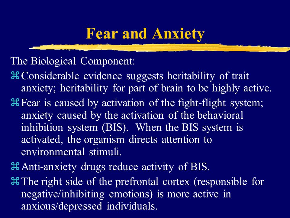Fear and Anxiety The Biological Component: