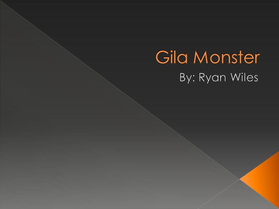Gila Monster By: Ryan Wiles