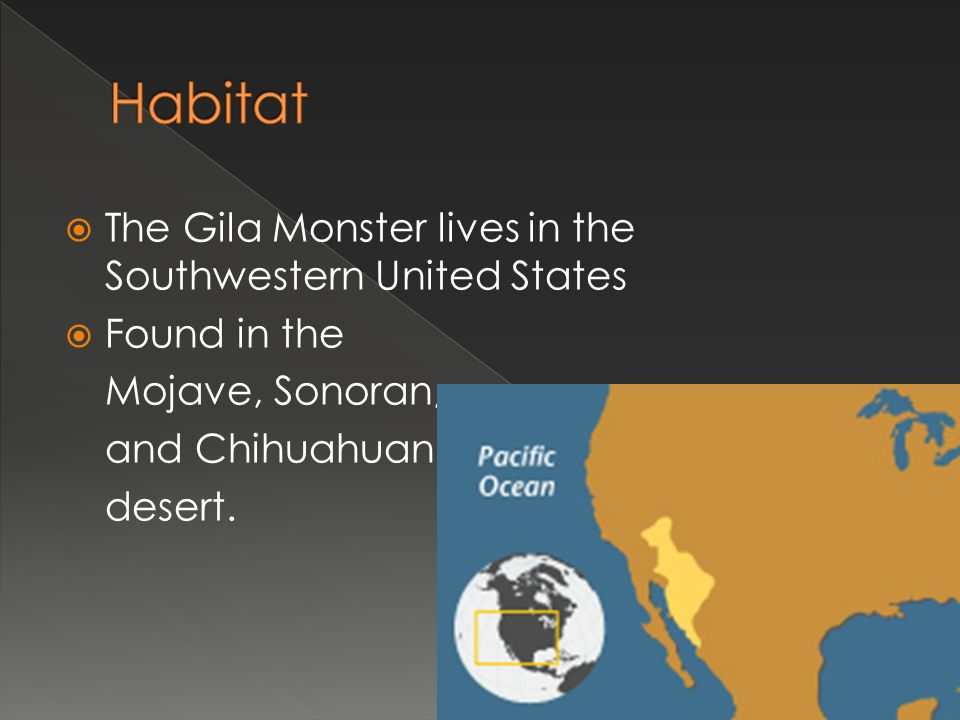 Habitat The Gila Monster lives in the Southwestern United States