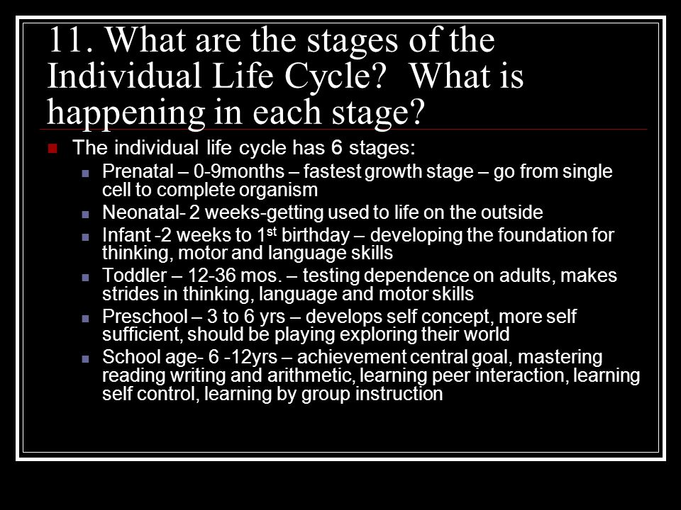 11. What are the stages of the Individual Life Cycle