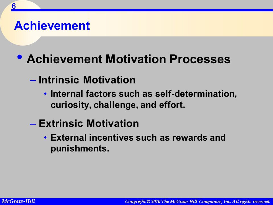 Achievement Motivation Processes
