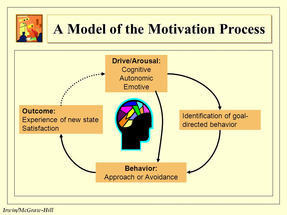 A Model of the Motivation Process