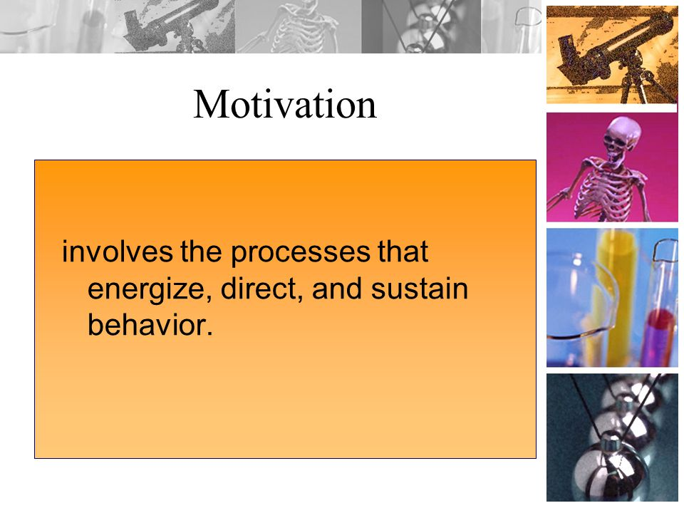 Motivation involves the processes that energize, direct, and sustain behavior.
