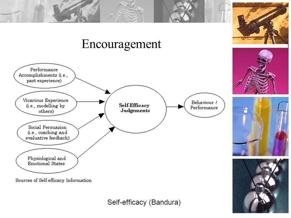 Encouragement Self-efficacy (Bandura)