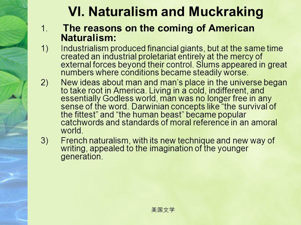 VI. Naturalism and Muckraking