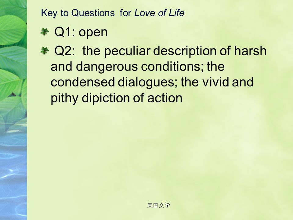 Key to Questions for Love of Life
