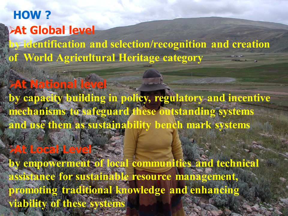 HOW At Global level. by identification and selection/recognition and creation of World Agricultural Heritage category.