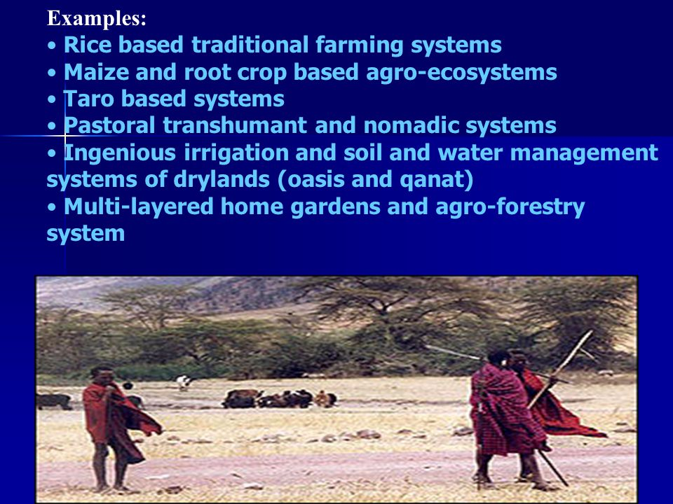 Examples: Rice based traditional farming systems. Maize and root crop based agro-ecosystems. Taro based systems.