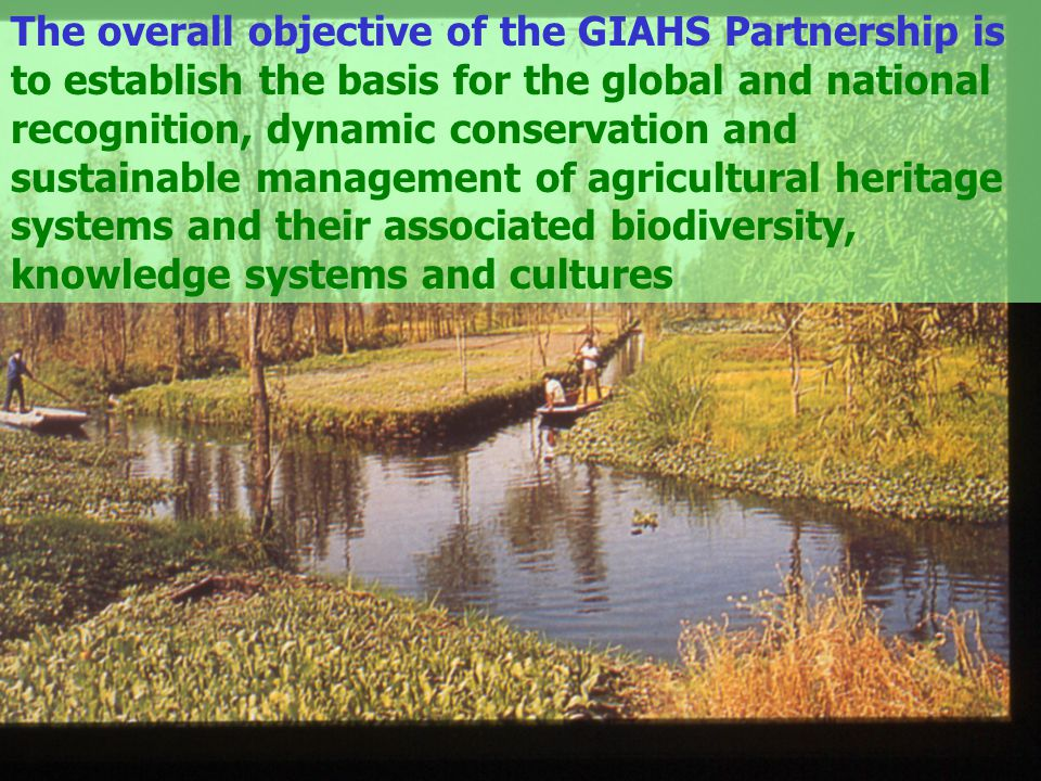 The overall objective of the GIAHS Partnership is