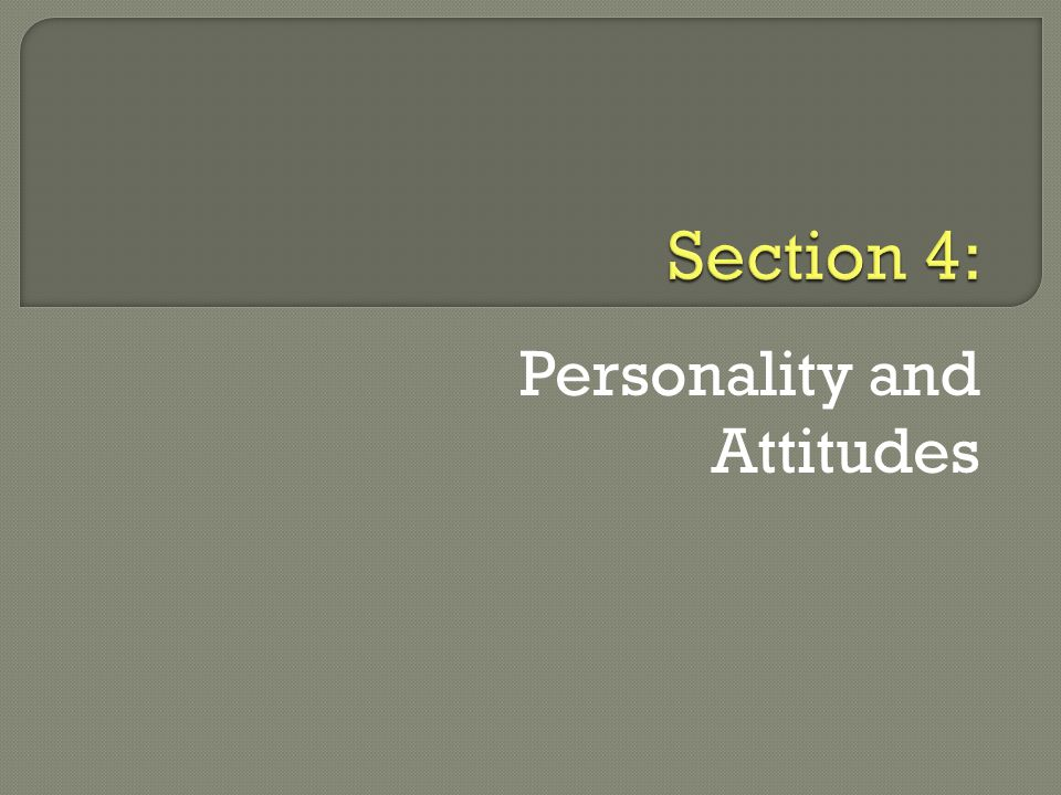 Personality and Attitudes