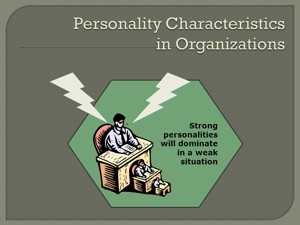 Personality Characteristics in Organizations