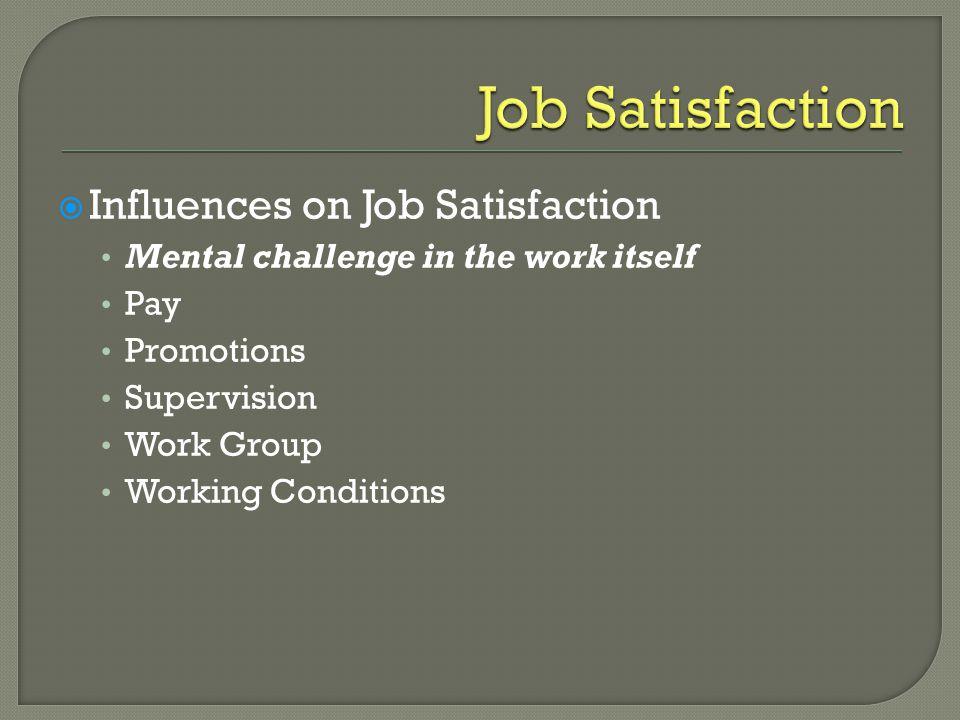 Job Satisfaction Influences on Job Satisfaction