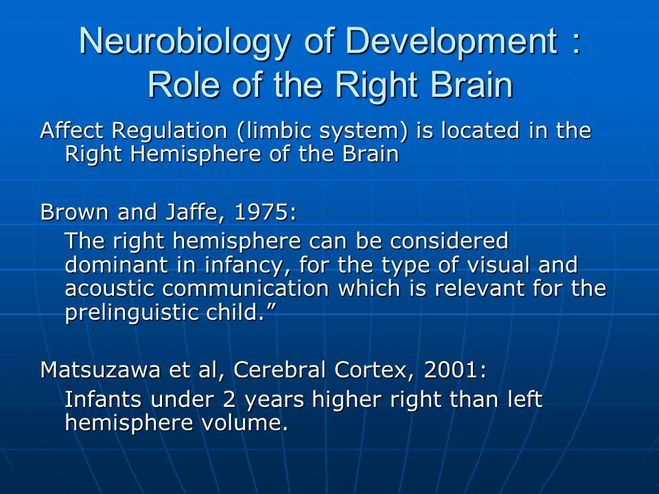 Neurobiology of Development : Role of the Right Brain