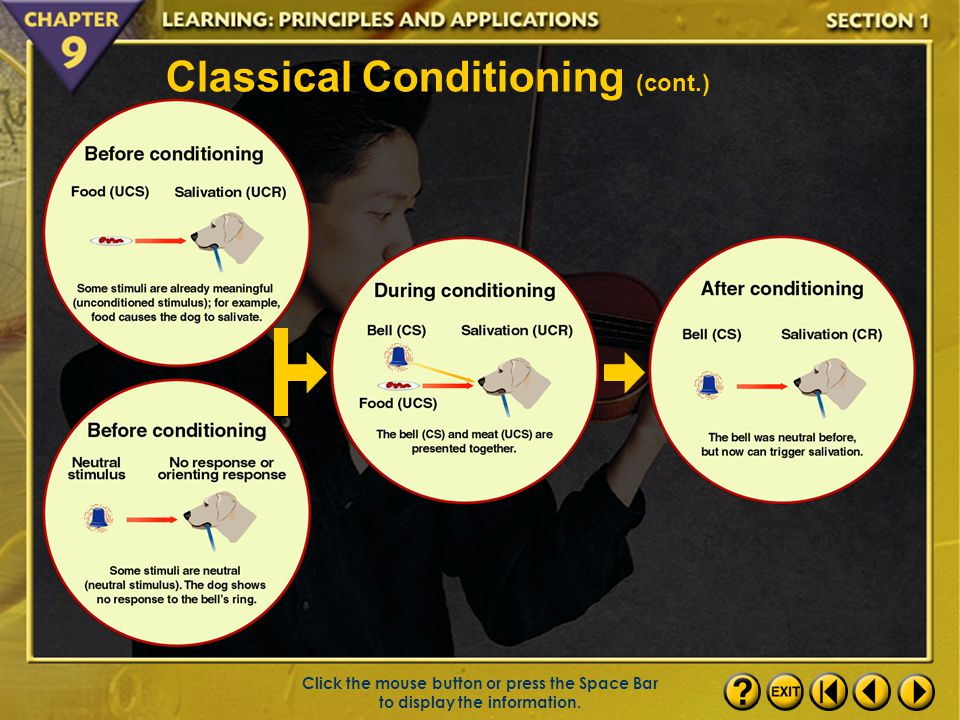 Classical Conditioning (cont.)
