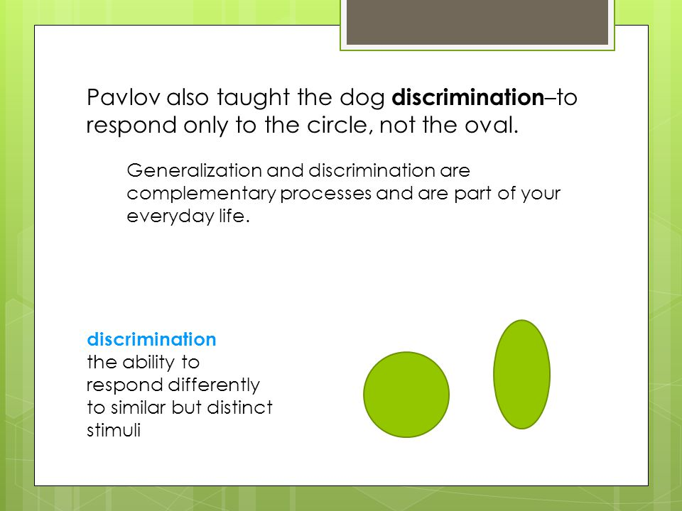Pavlov also taught the dog discrimination–to respond only to the circle, not the oval.
