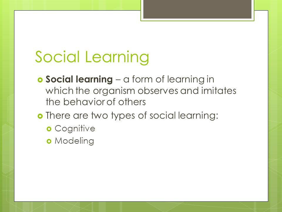 Social Learning Social learning – a form of learning in which the organism observes and imitates the behavior of others.