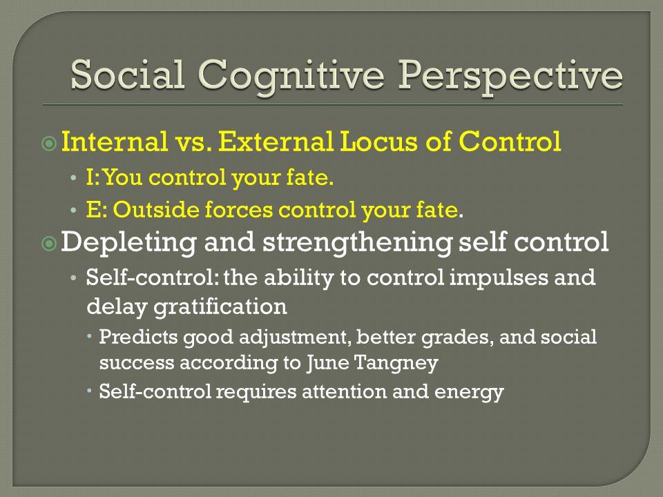 Social Cognitive Perspective