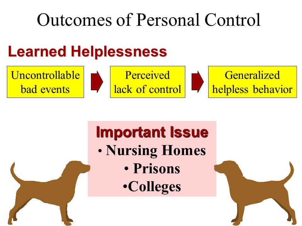 Outcomes of Personal Control