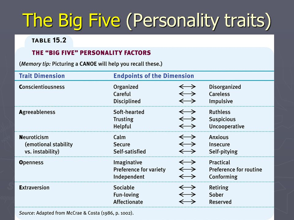 The Big Five (Personality traits)