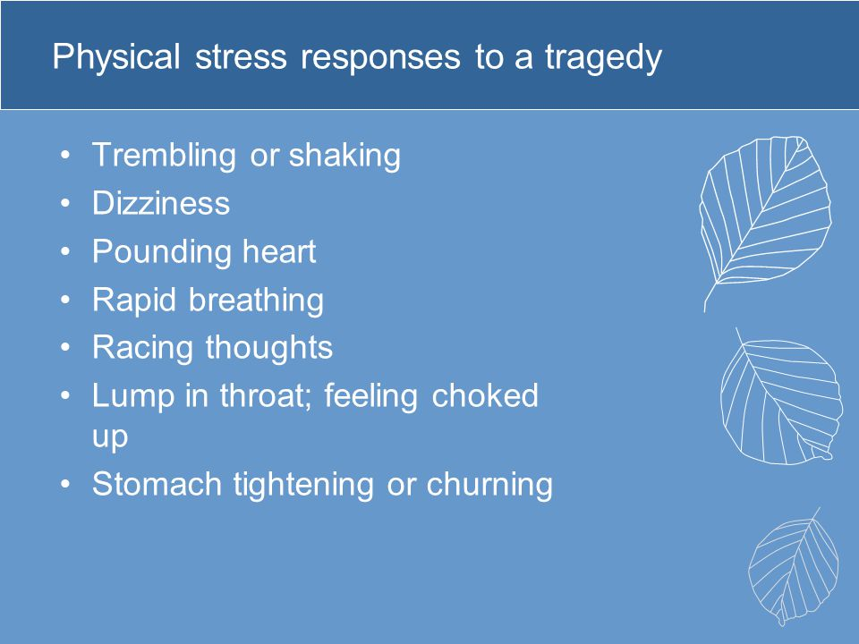 Physical stress responses to a tragedy