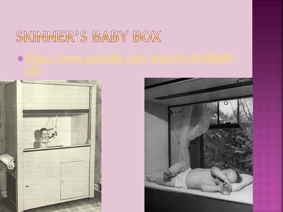 Skinner's Baby box http://www.youtube.com/watch v=Pn9lBdkY u5Y