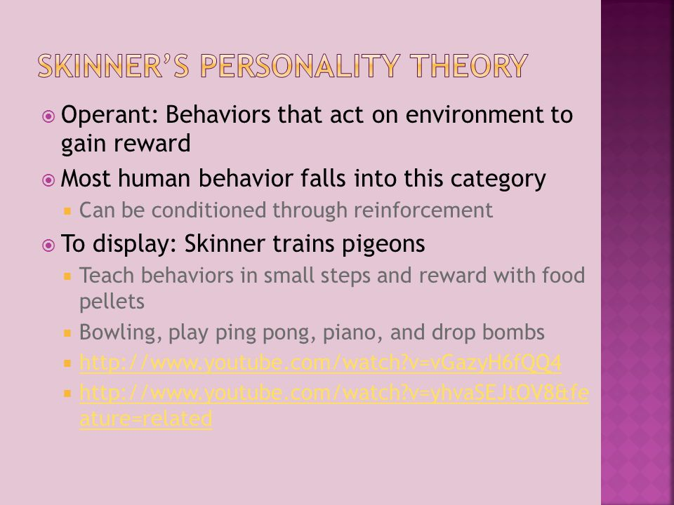 Skinner's personality Theory