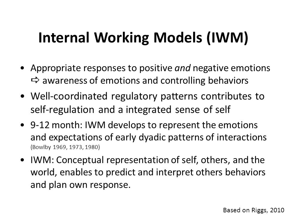 Internal Working Models (IWM)
