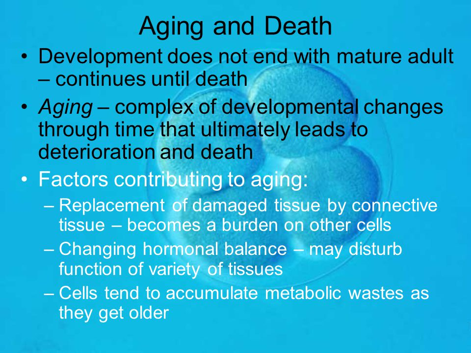 Aging and Death Development does not end with mature adult – continues until death.
