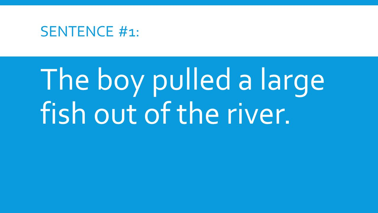The boy pulled a large fish out of the river.
