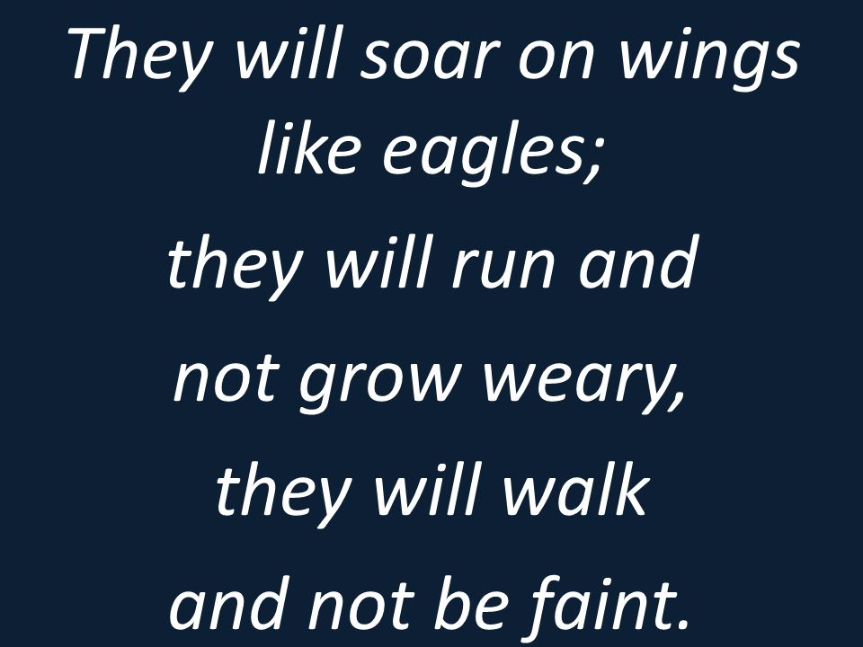 They will soar on wings like eagles;