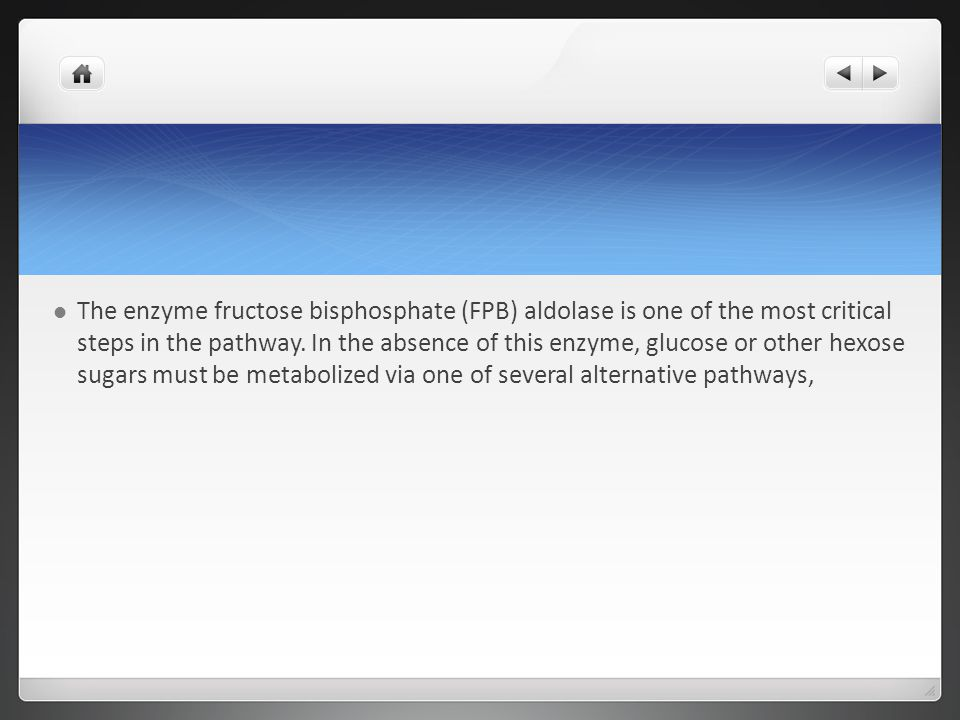 The enzyme fructose bisphosphate (FPB) aldolase is one of the most critical steps in the pathway.