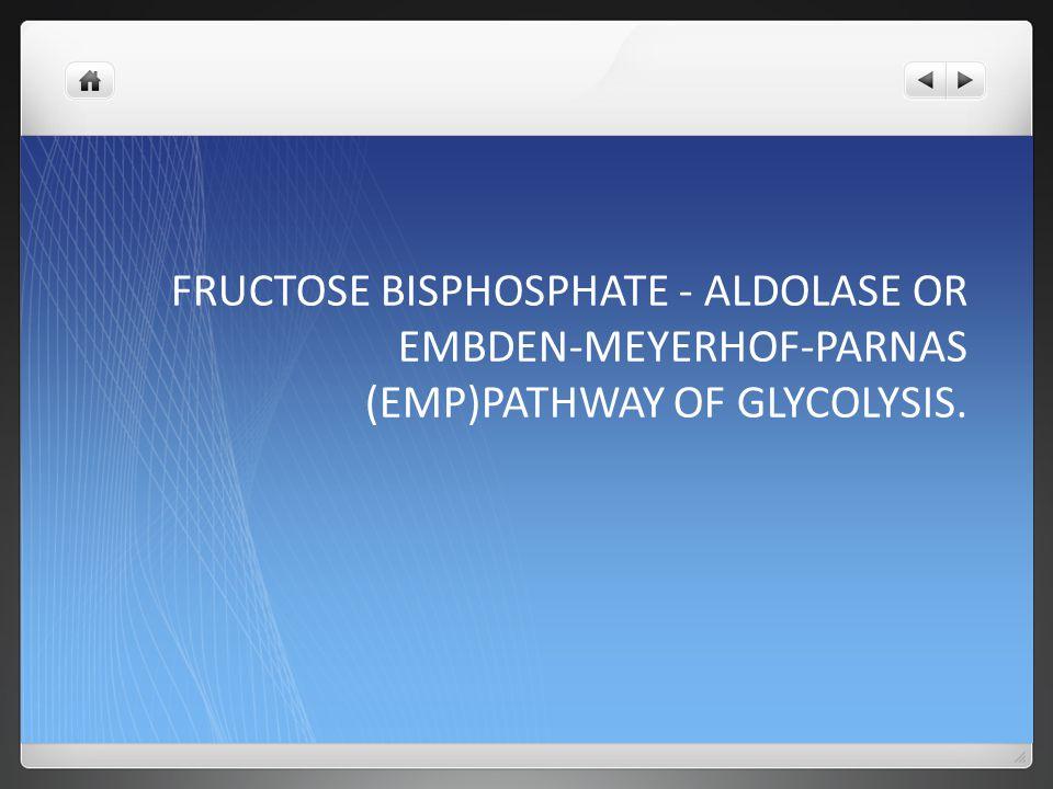 FRUCTOSE BISPHOSPHATE - ALDOLASE OR EMBDEN-MEYERHOF-PARNAS (EMP)PATHWAY OF GLYCOLYSIS.