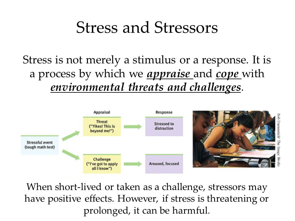 Stress and Stressors