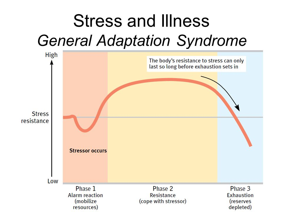 the general adaptation syndrome Scientist hans selye (1907-1982) introduced the general adaptation syndrome model in 1936 showing in three phases what the alleged effects of stress has on the body in his work, selye - ' the father of stress research ,' developed the theory that stress is a major cause of disease because chronic stress causes long-term chemical changes.
