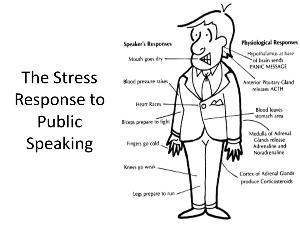 The Stress Response to Public Speaking