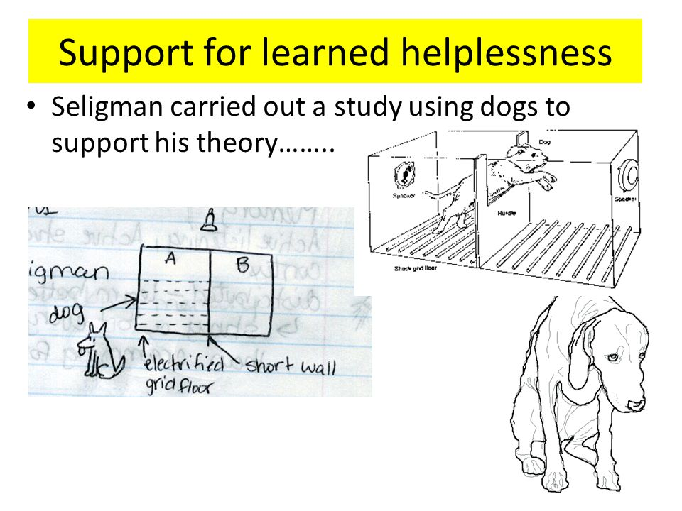 Support for learned helplessness