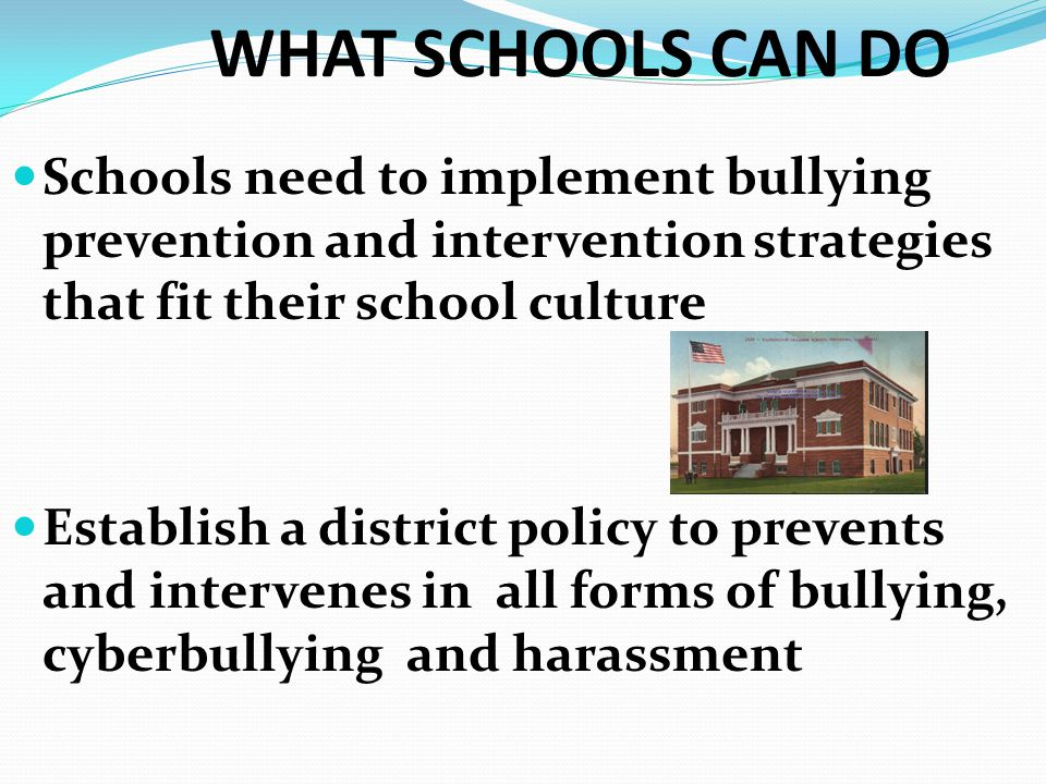 WHAT SCHOOLS CAN DO Schools need to implement bullying prevention and intervention strategies that fit their school culture.