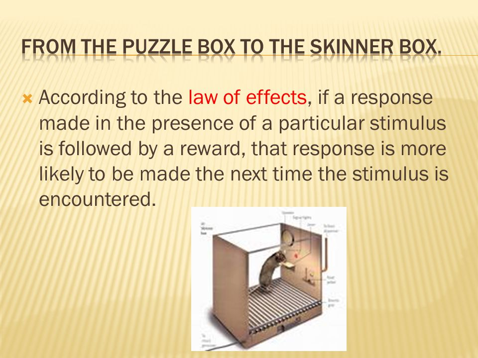 From the Puzzle box to the skinner box.