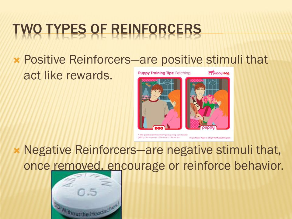 Two Types of Reinforcers