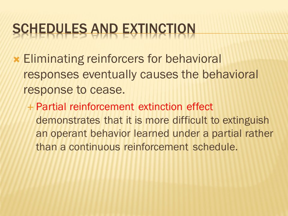Schedules and extinction