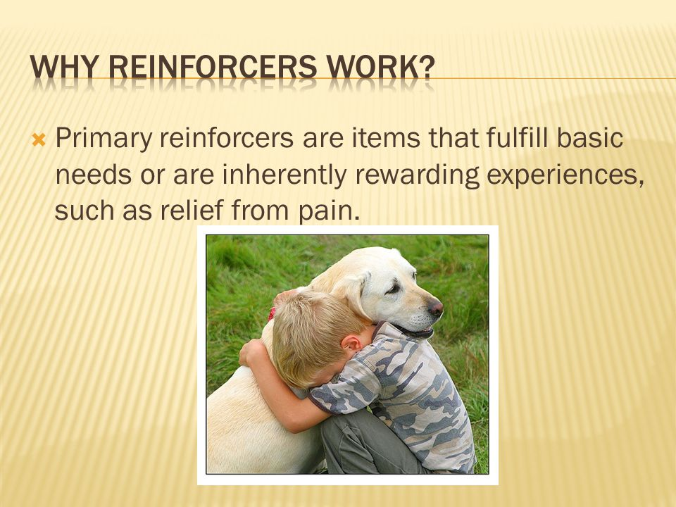 Why Reinforcers work.