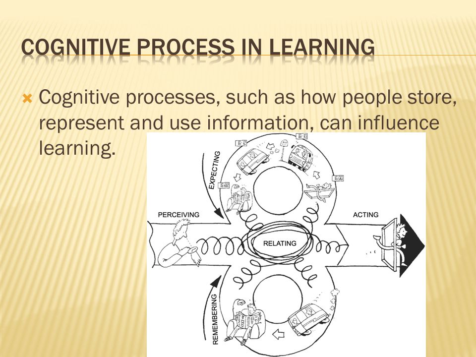 Cognitive Process in Learning