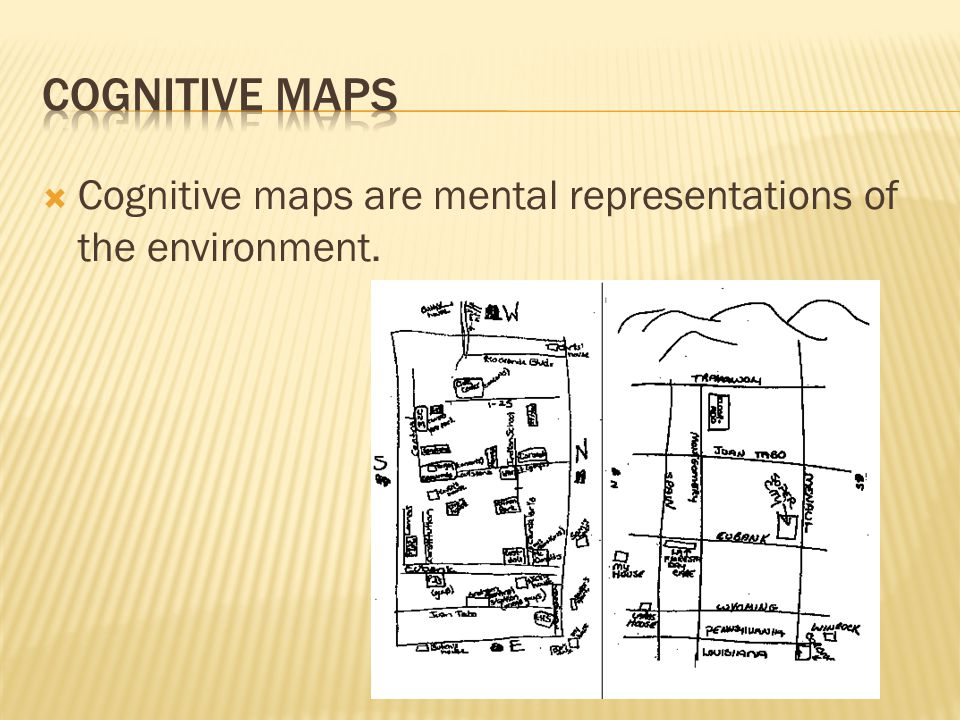Cognitive Maps Cognitive maps are mental representations of the environment.