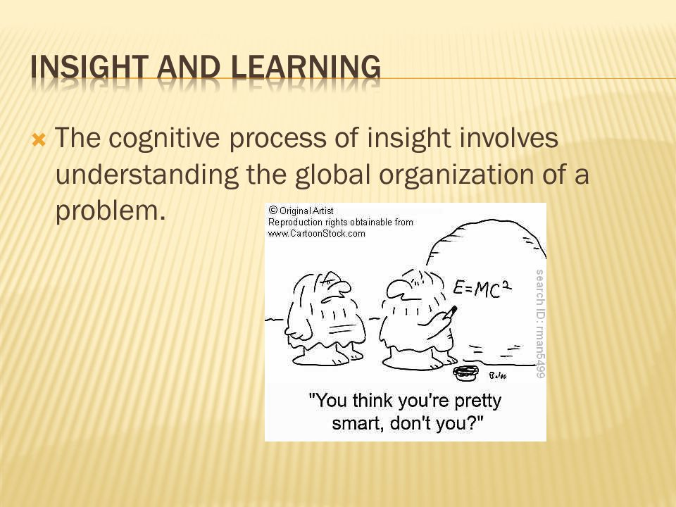 Insight and Learning The cognitive process of insight involves understanding the global organization of a problem.