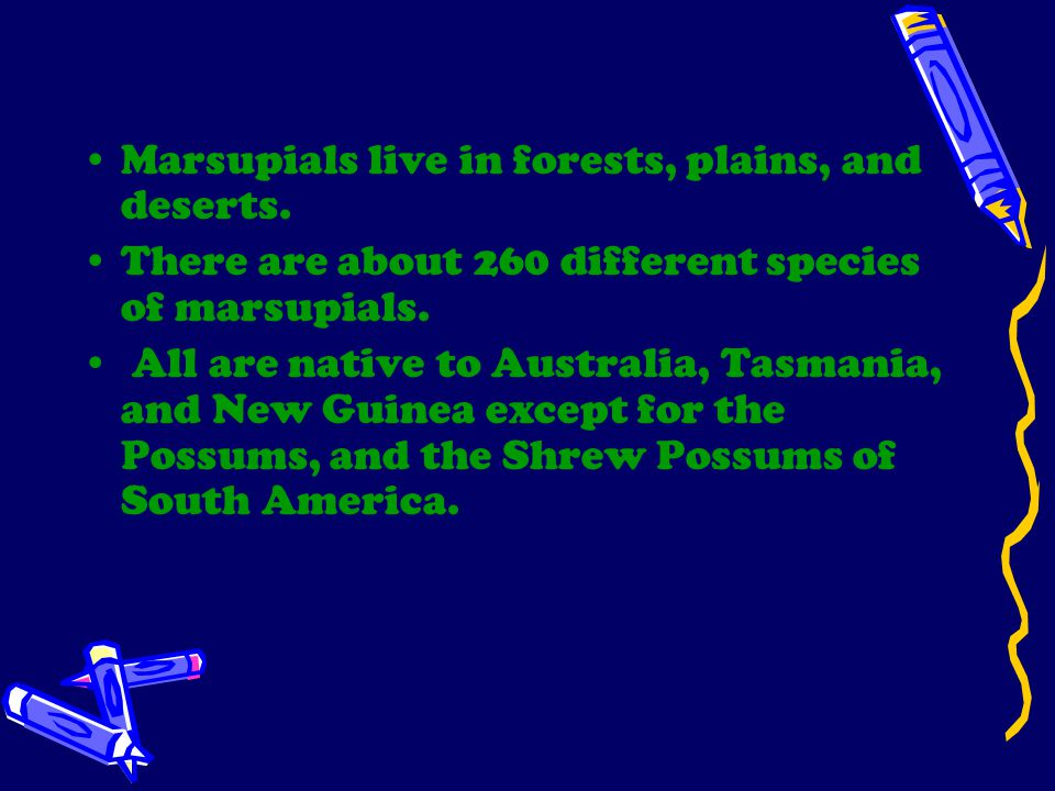 Marsupials live in forests, plains, and deserts.