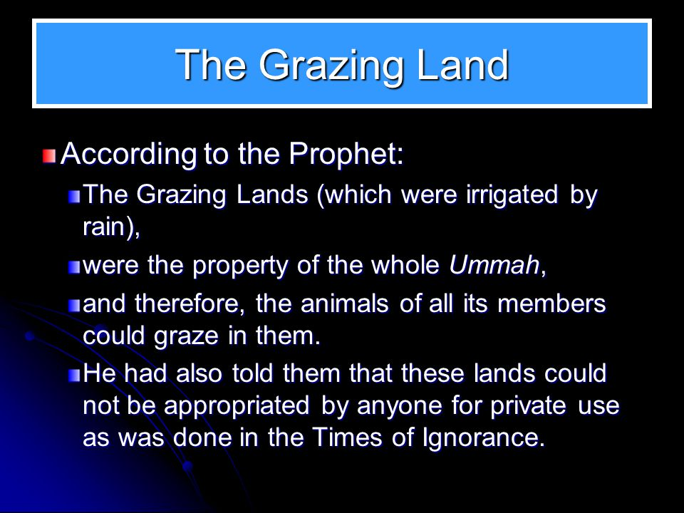 The Grazing Land According to the Prophet: