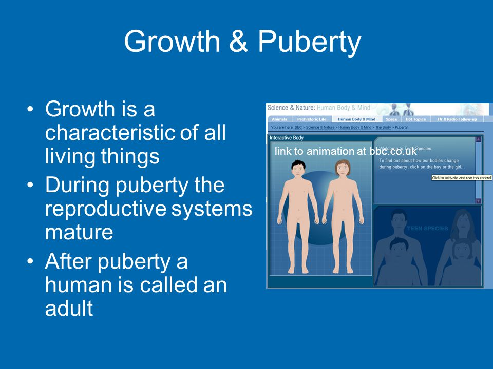 Growth & Puberty Growth is a characteristic of all living things