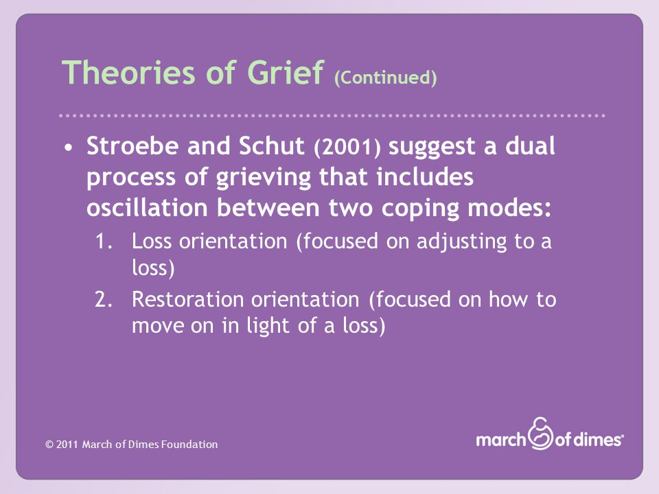 Theories of Grief (Continued)